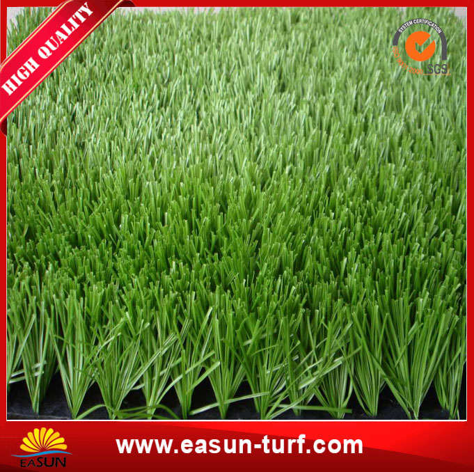 China Popular Plastic and Fake Landscaping Grass-MY