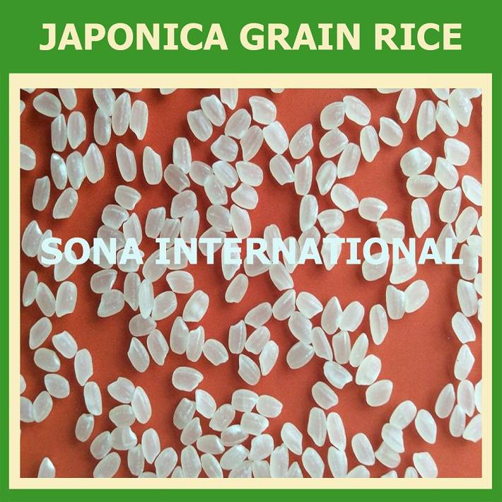 JAPONICA RICE OR SUSHI RICE 5% BROKEN - NEW CROP 2016