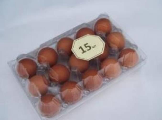 15x1 Egg tray