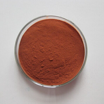 10:1 Pure Natural Spine Date Seed Extract Powder for Sleep Aid