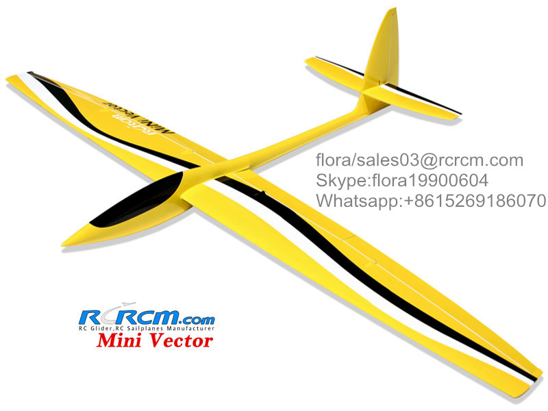 Mini vector non motor rc sailplane of rcrcm