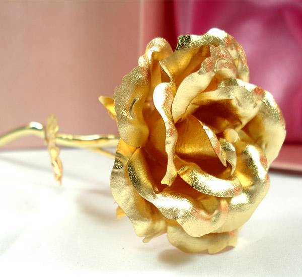 24K Gold foil open rose