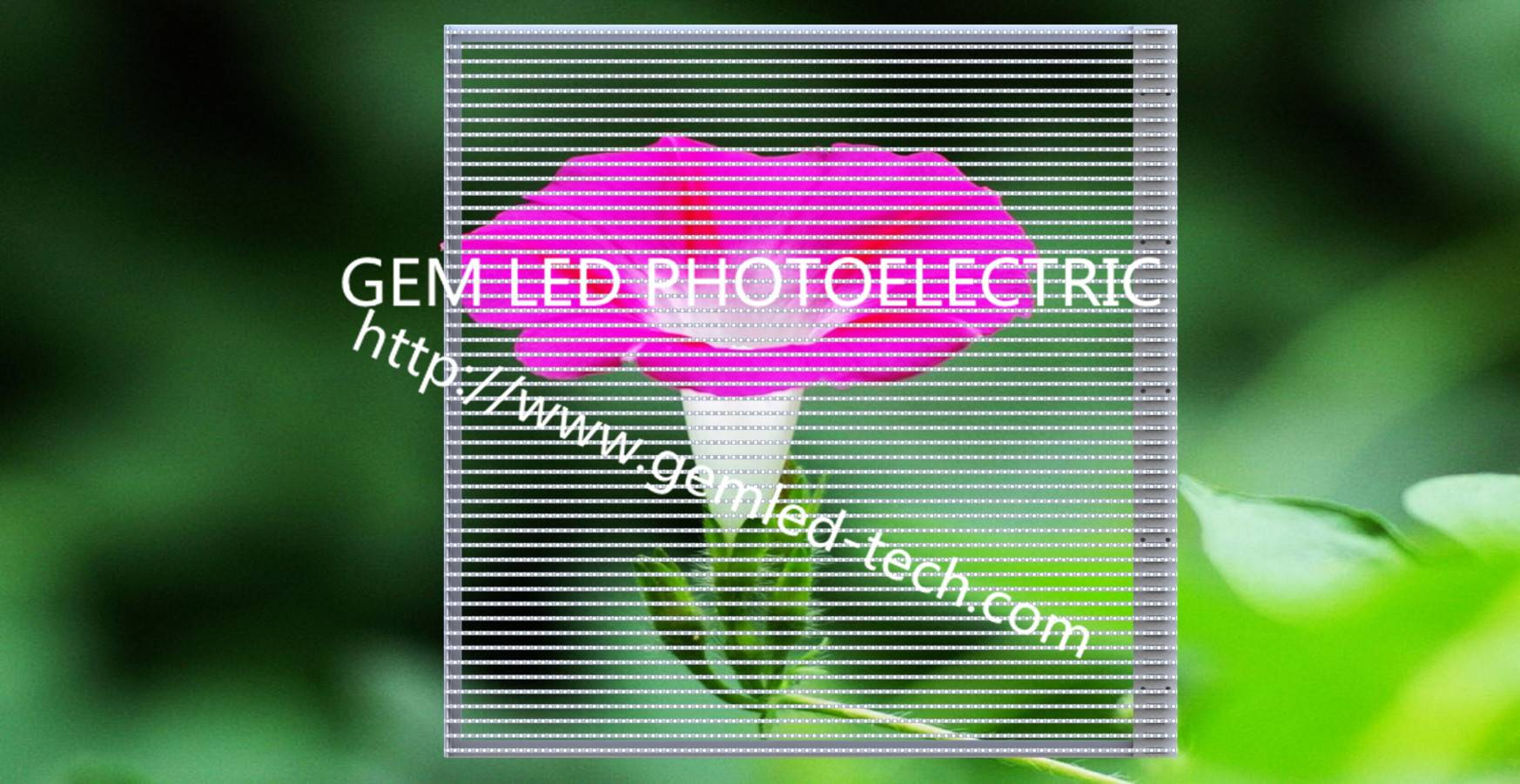 High transparency indoor P5B transparent led display