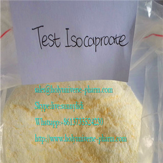 Testosterone Isocaproate/Testosterone Iso/Anabolic steroid Testosterone Iso/high-quality test iso/ca