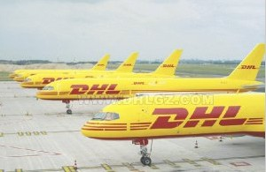 SGS supplier offer the International Express Transportion