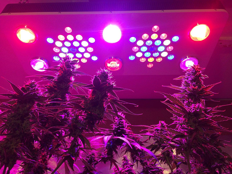 High yield harvester plant grow light BR690 850w led grow light red blue seedling veg bloom dimmable