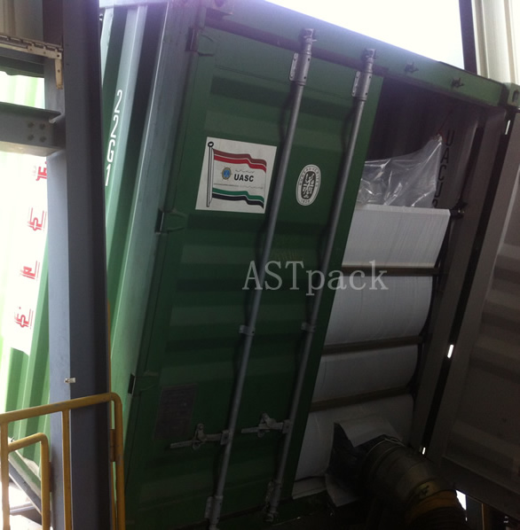 Dry Bulk Container Liner for Transportation of PTA