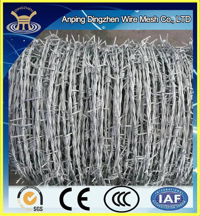 High Quality Galvanized Barbed Wire For Sale / Best Selling