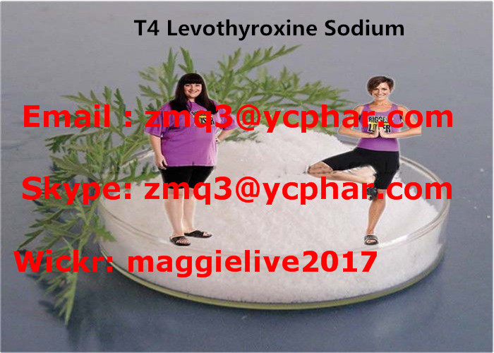 T4 Weight Loss Supplements L - Thyroxine Fat Cutting Steroids To Treat Obesity