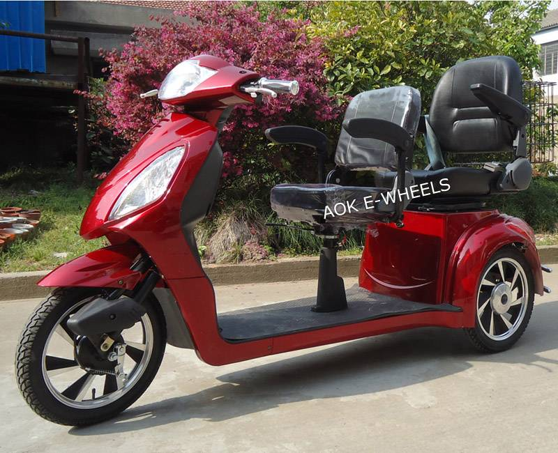 500W/800W Two Seat Mobility Scooter with Deluxe Saddle (TC-016C)