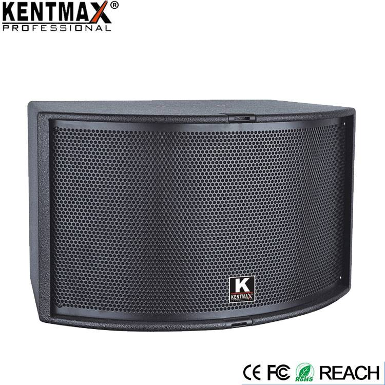 Superior Quality 200 Watts 10 inch Karaoke KTV Power Speaker