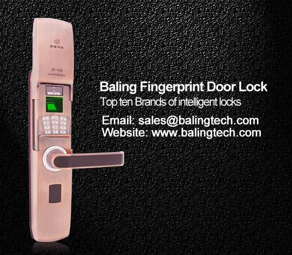 fingerprint keypad door lock anti-theft home lock digital door lock manufacturer