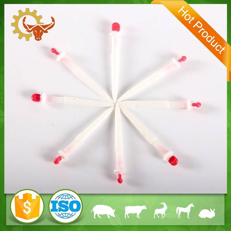 PP cow mastitis milk hitch livestock