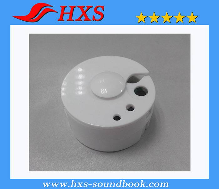 Recordable Electronic Round Music Sound Box for Plush Toy