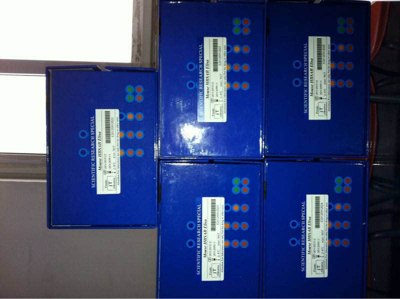 Human Receptor II for the Fc region of immunoglobulin G,FcyRII ELISA Kit