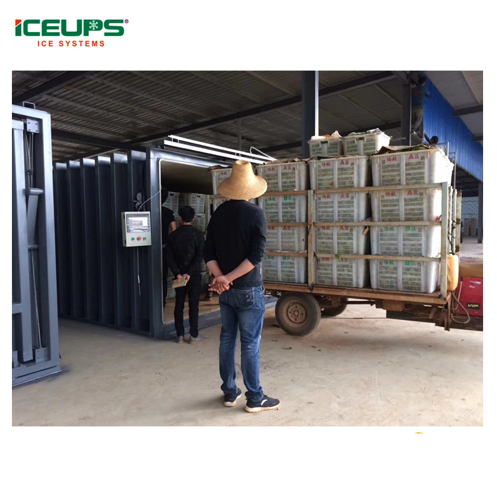 Vegetables vacuum cooling machine for sale