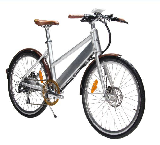 36V 10AH Mountain electric bike with SHIMANO speed system