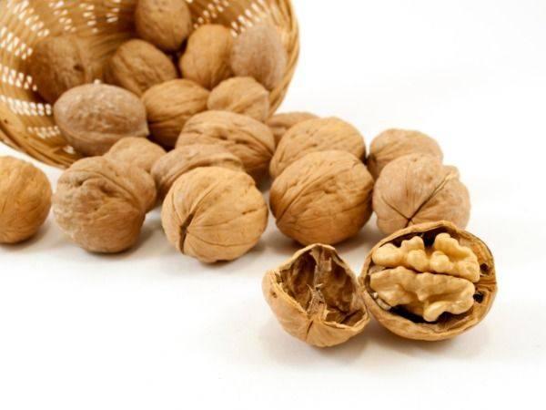 bulk dried walnuts with thin shell, walnut kernels for sale