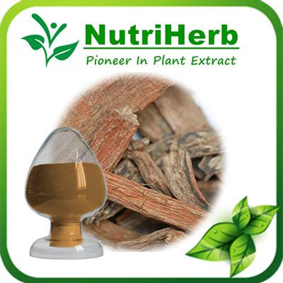 Natural Salvia miltiorrhiza Extract
