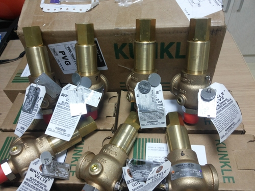 FM APPROVED Safety And Relief Valve