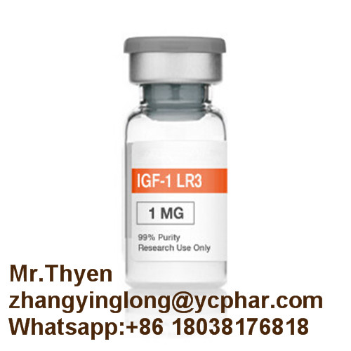 Supply 1mg Peptide Igf-1lr3 for Muscle Growth