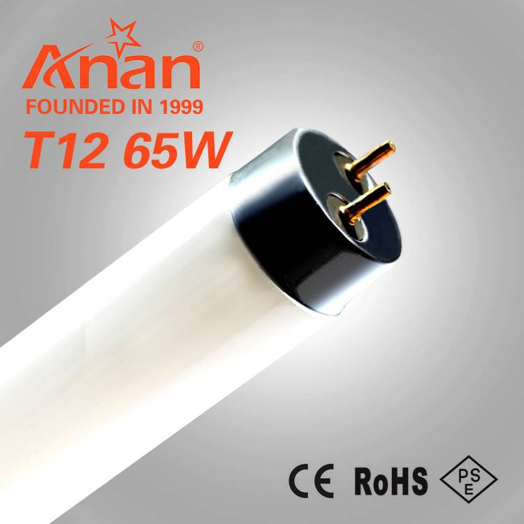 t12 straight fluorescent lamp