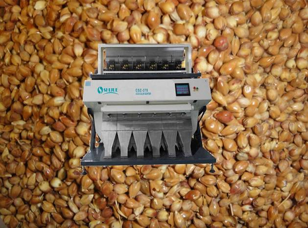 High quality and high accuracy with factor price for Sorghum Color Sorter