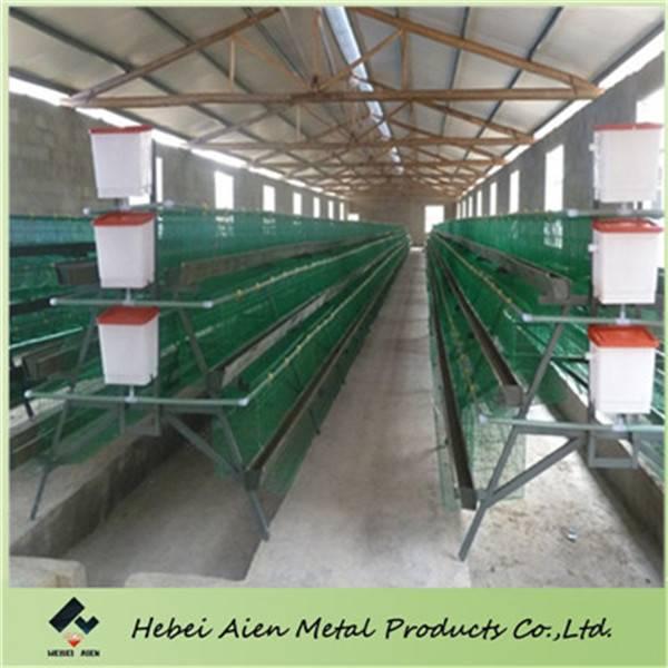 farming chicken cage