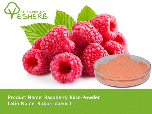 Pure Natural Organic Raspberry Juice Powder