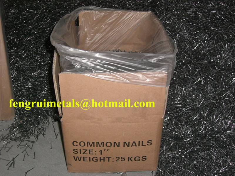 25kg per carton common round nails for sale