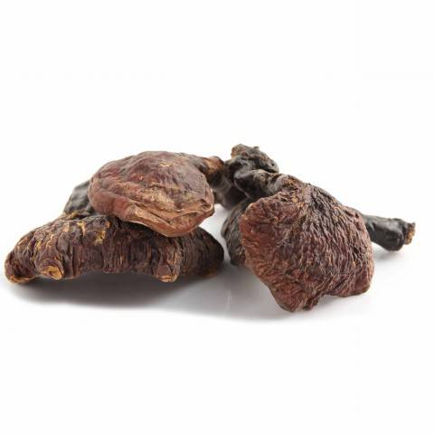 JuYuan Wild Grown Ganoderma Lucidum 500g