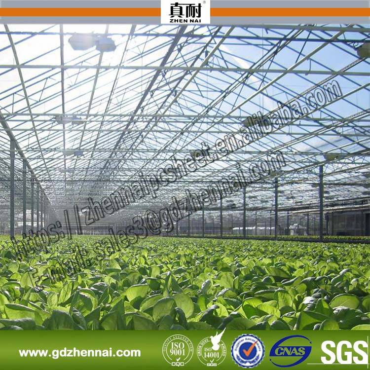 ISO Certification Marolon Transparent Polycarbonate Used in Vegetable Tunnel Greenhouse