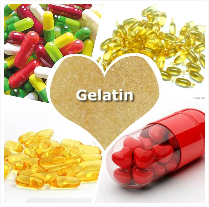 2016 china factory supply fresh medical / Pharmaceutical Grade gelatin