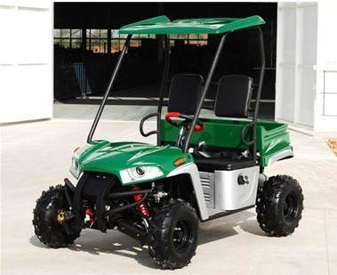 150CC UTV Utility Truck With CE, Automatic With Reverse