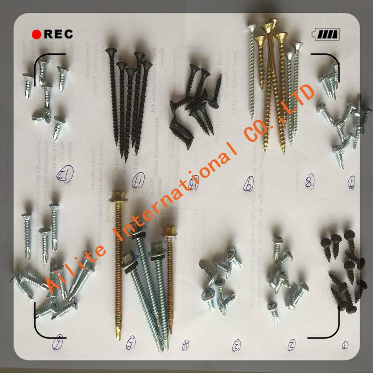Color Zinc Plated Chipboard Screw Philips CSK head self tapping screw