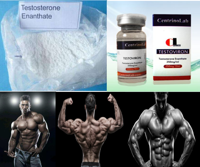 99.0% High Purity Testosterone Enanthate/Testosterone Enan raw powder TESTOVIRON for bodybuilding