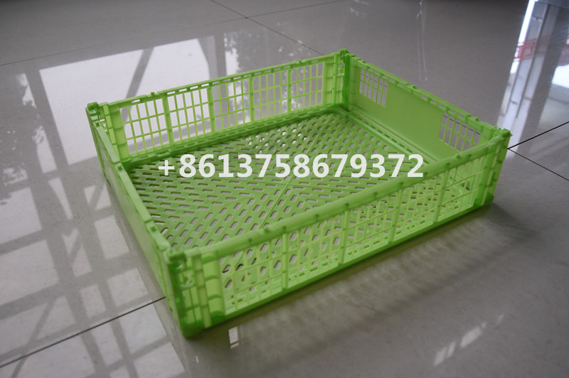 Foldable Fruit Crate Mold