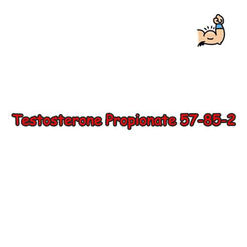99% Purity Anabolic Steroid Raw Powder Testosterone Propionate CAS 15262-86-9