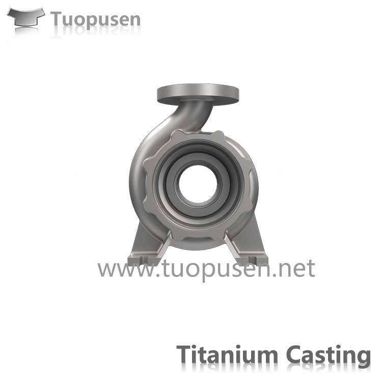 Titanium Castings pump casing China Precison Cast Titanium pump