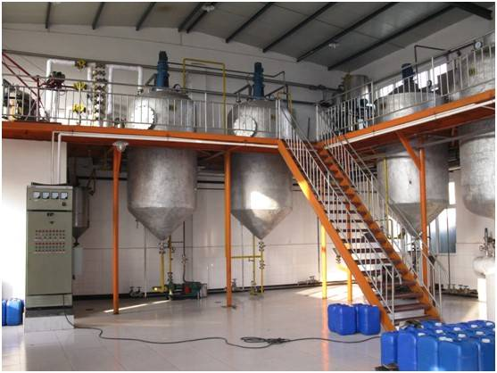 Palm kernel oil refinery process with CE opproved