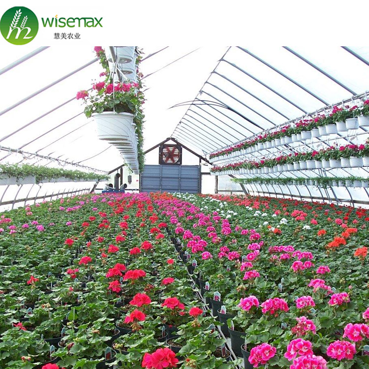 Factory price plastic agriculture greenhouse farming equipment with low cost
