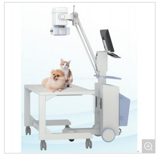 Ce ISO Certified High Qualified Veterinary Diagnostic Equipment X-ray Machine YSD101-Vet