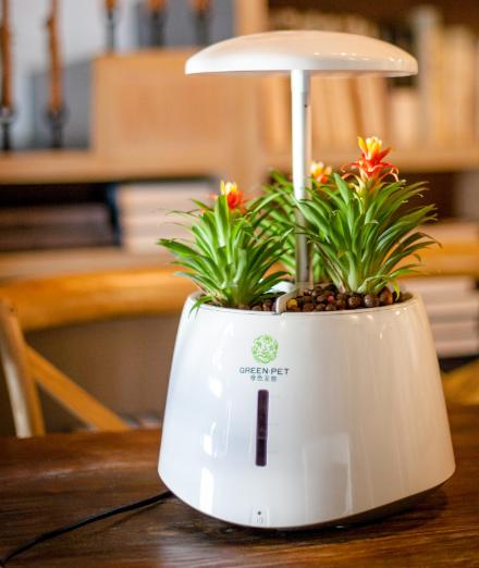 Indoor hydroponic grow system smart garden