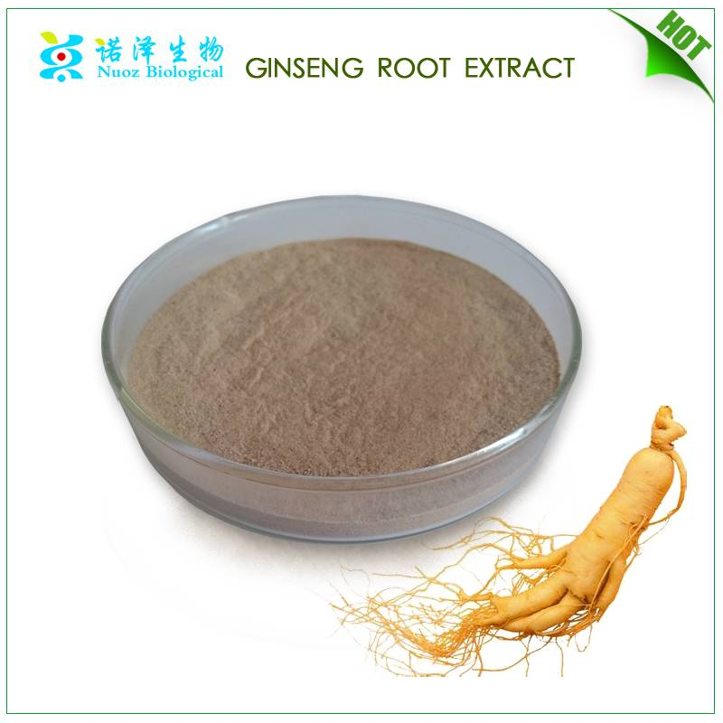 Eye Protection for Health Food & Beverage panax ginseng extract