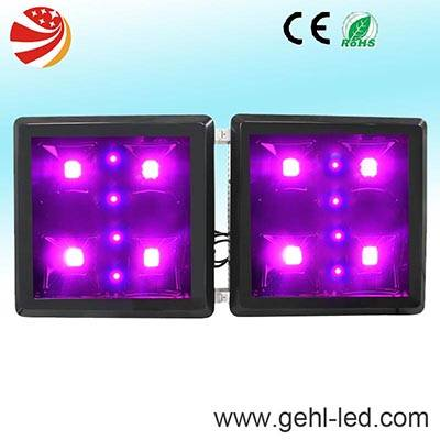new style 260w cob led grow light for medical plant