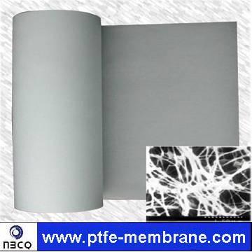 PTFE Porous Membrane