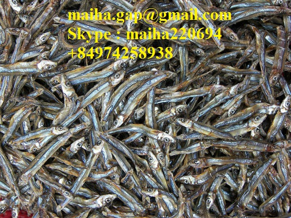 Dried Anchovy Sprat Vietnam With High Quality For Sale