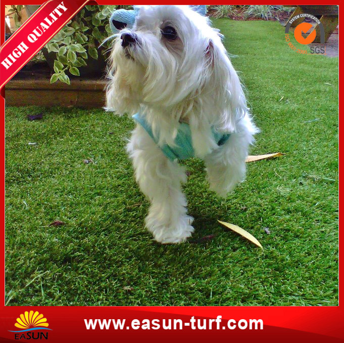 30mm Outdoor Pet Friendly Landscaping Synthetic Artificial Turf with SGS-MY