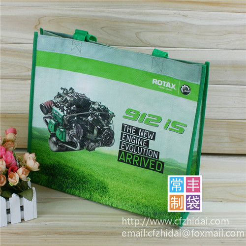 pp non woven bag,colorful print,beautiful look