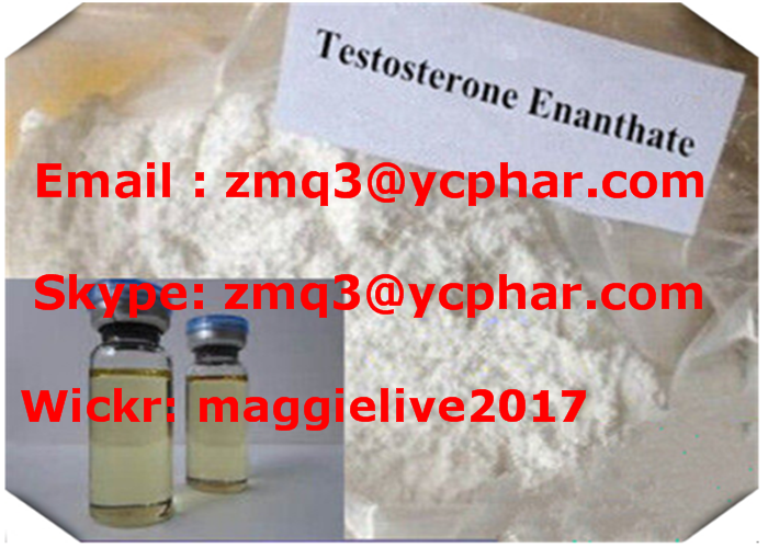 Testosterone Enanthate Cycle Oil Liquid Vial Bottle Bodybuilding Steroid